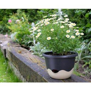 Blumenampel Mareta, 30 cm Durchmesser elfenbein anthrazit